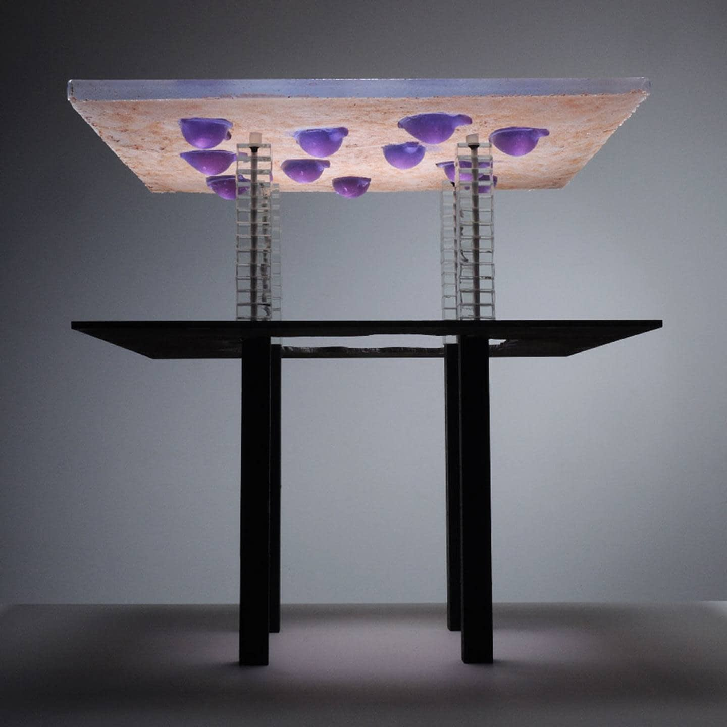 WHYADUCK-low-table-2